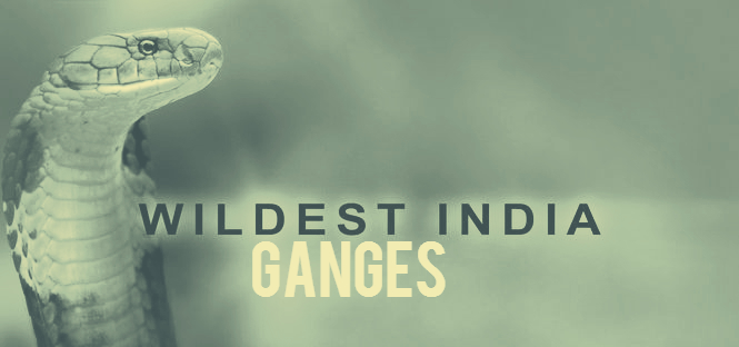 Wildest India Ganges Cover Picture
