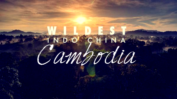 Wildest Indochina Cambodia Cover Photo