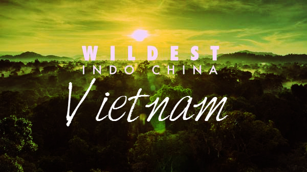 Wildest Indochina Vietnam Cover Photo