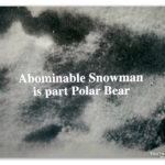 "Image of a footprint with text ""Abominable snowman is part polar bear"""
