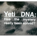 "Image of a footprint with text ""Yeti DNA: had the mystery really been solved?"""