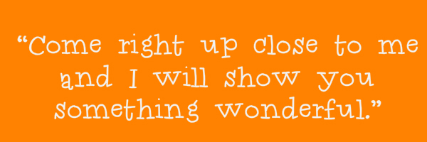 "Orange colored banner with text ""Come right up close to me and I will show you something wonderful."""